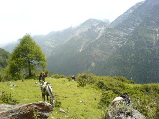 Horse Trek Day II (22)