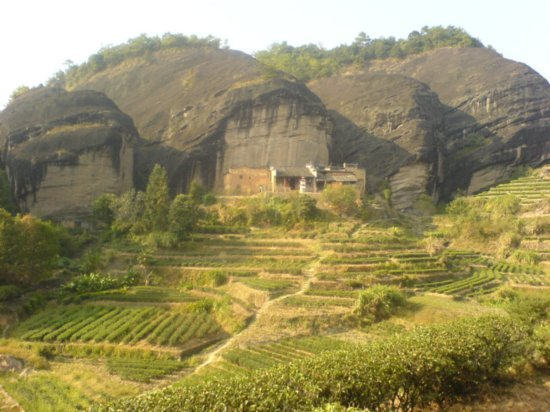Wuyi Shan Day One 5