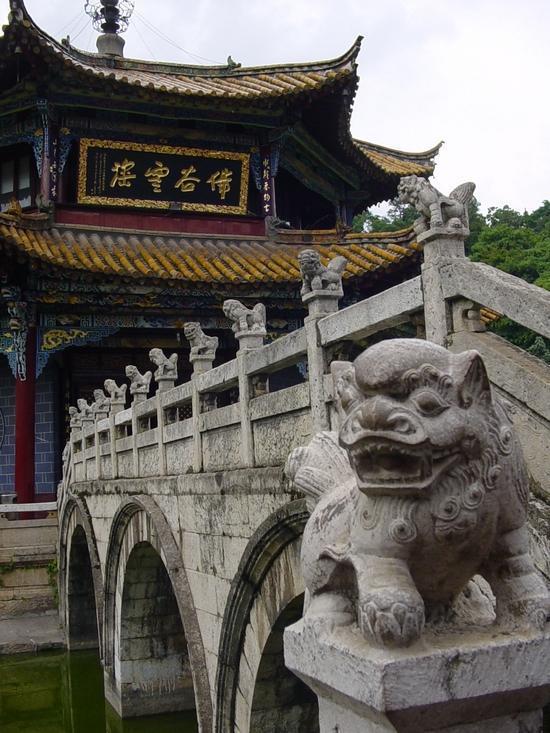 Yuantong Si