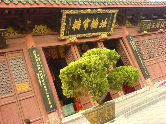 Kaifeng - Grand Buddha Temple (11)