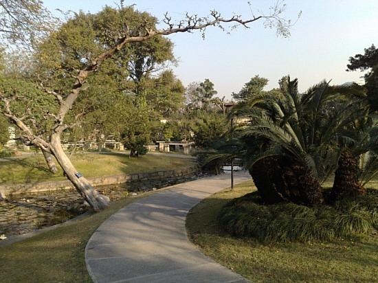 Beautiful Liuhuahu Park & Pets On Hooks