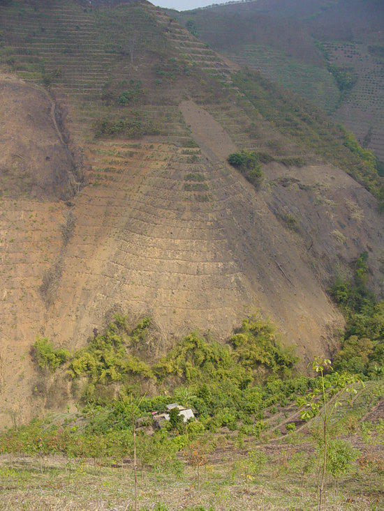The Jinghong Mud Map Walk (8)