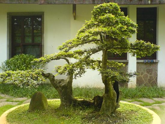 06 - 16 June 2007 - Wuyi Shan Day 1 (35)