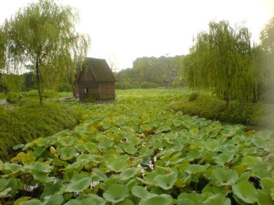 Zhenjiang - Jiao Shan 17
