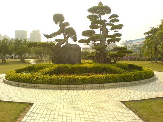 Yundang Lake Area (11)