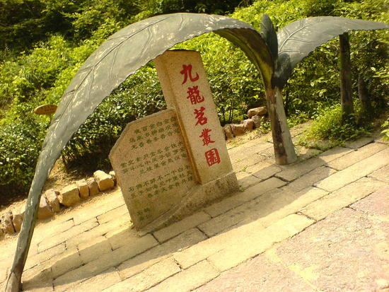 Wuyi Shan Day 2 (36)