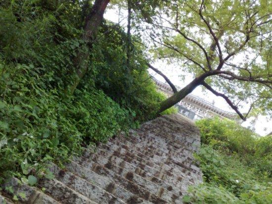 4-Jigongshan Third Day Adventure