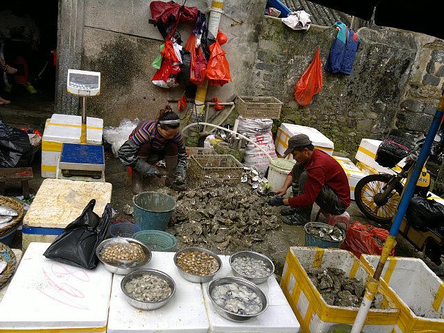 Sotto Portico Street & Market Adventure