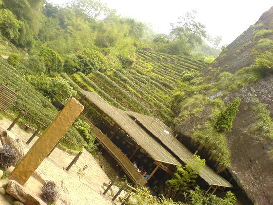 Wuyi Shan Day 2 (32)