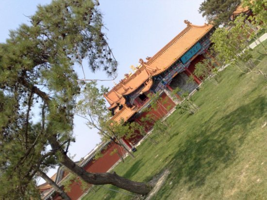 Wuta Pagoda & Da Zhao Temple