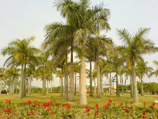 Yundang Lake Area (5)