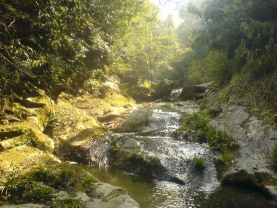 Waterfall Picnic 3
