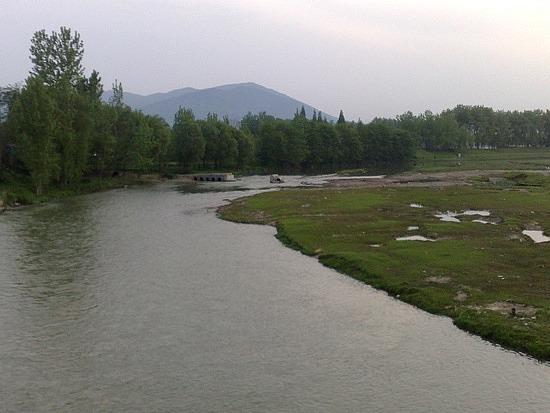 The Han River Water Buffalo Ride & Bar Night