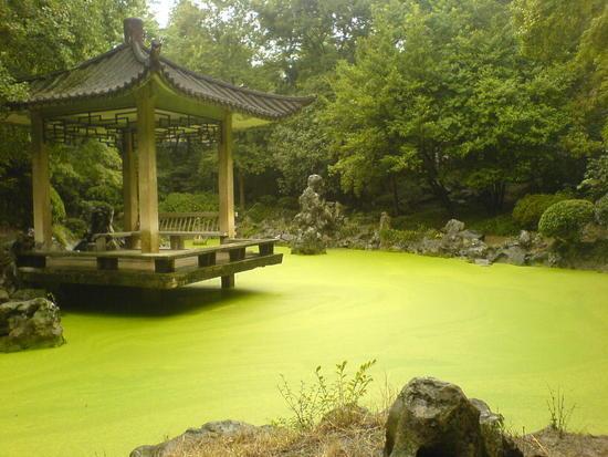 Hefei - City & Gardens Walk (2)