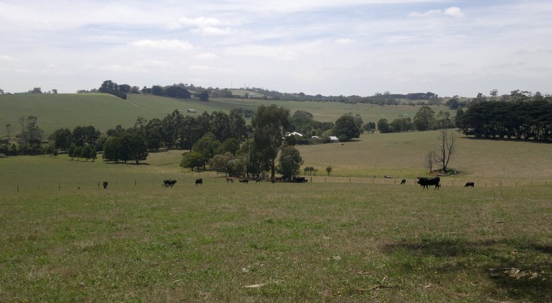 Back With The Family In Gippsland