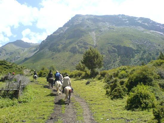 Horse Trek Day II (6)