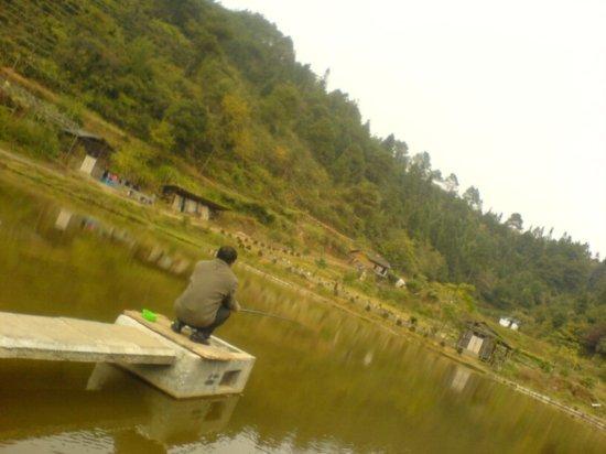 The Fish Farm Adventure 4