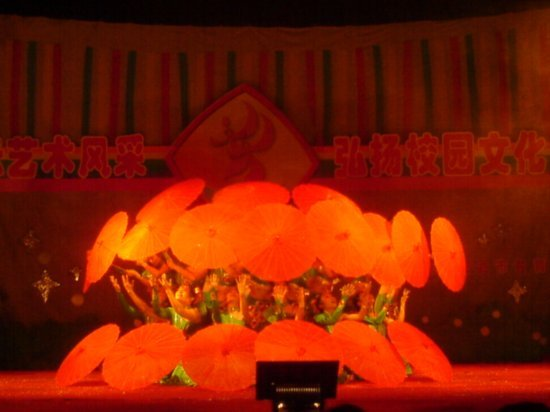 Shaowu City School Performance 08
