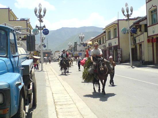 Horse Trek Day III (14)
