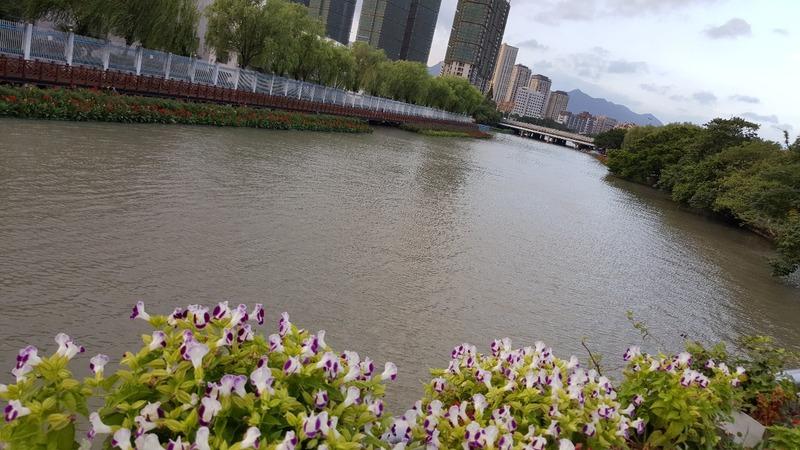 Wenzhou City Walks