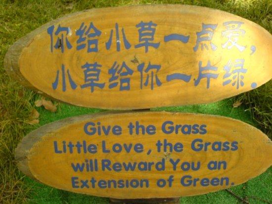 Suzhou - The Garden for Lingering In 2