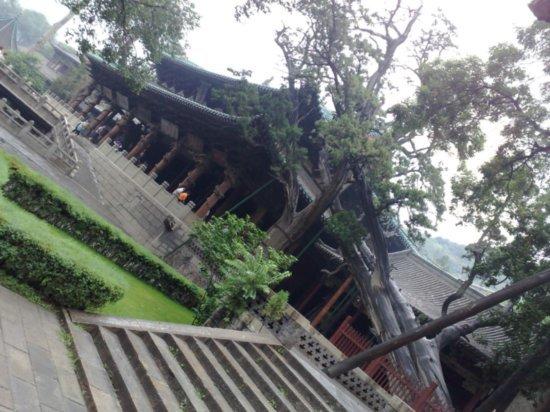12-Jinci Temple Adventure