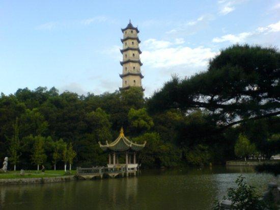 Wenzhou City Walk 15