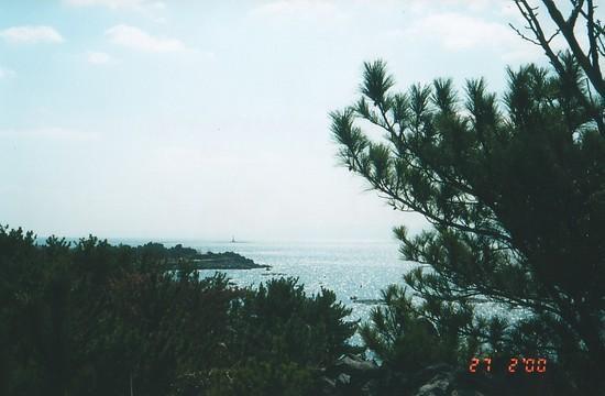 Kakoshima Bay & Sakurajima (11)