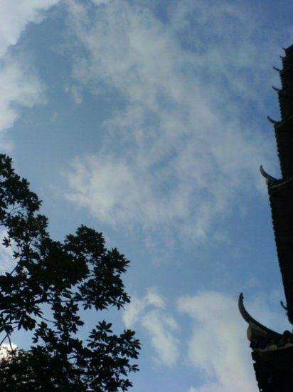 Wenzhou City Walk 18
