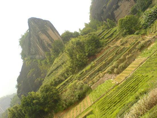 Wuyi Shan Day 2 (42)
