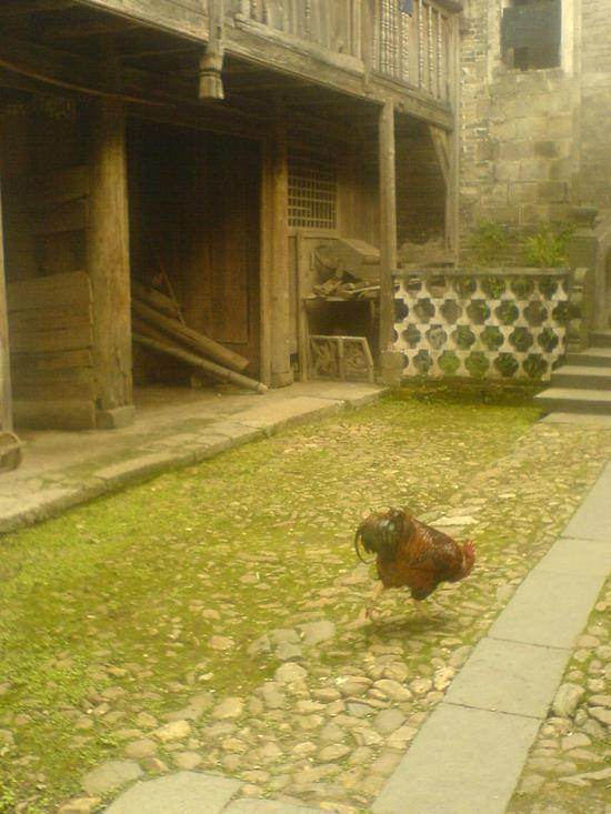 Ancient Heping Town (13)