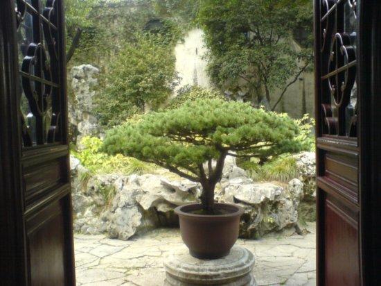 Suzhou - The Garden for Lingering In