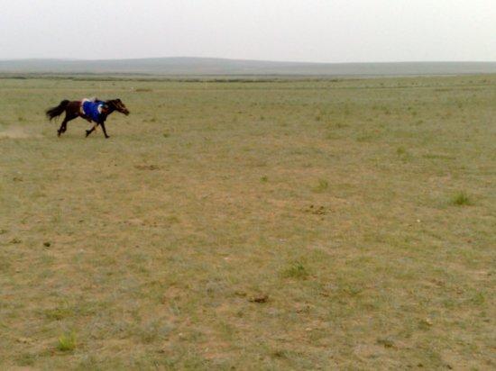 30-Hohhot Grasslands Adventure