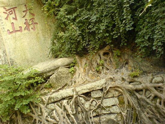 Taiwan Boat N Nanputo Temple (17)