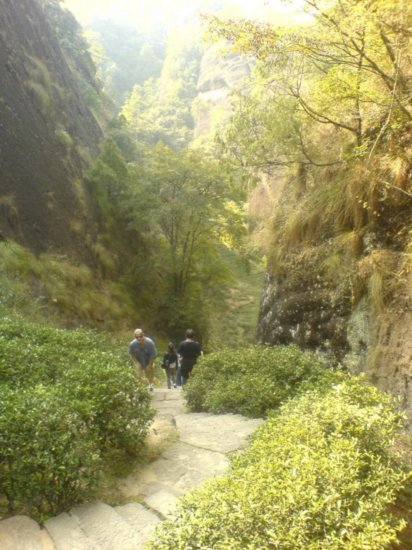 Wuyi Shan Day One 22