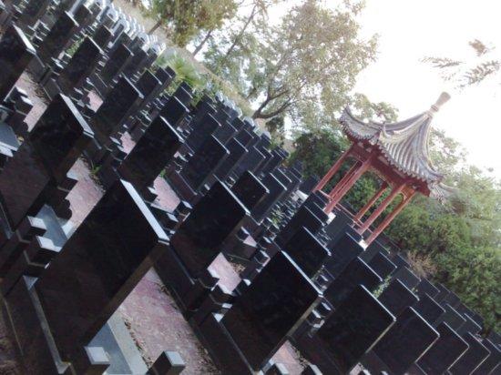 8-Teachers Day Pagoda Walk