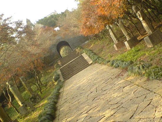 Mountain & Old Town Walk (13)