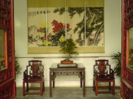 Yangzhou - Slender West Lake & Bonsai 7
