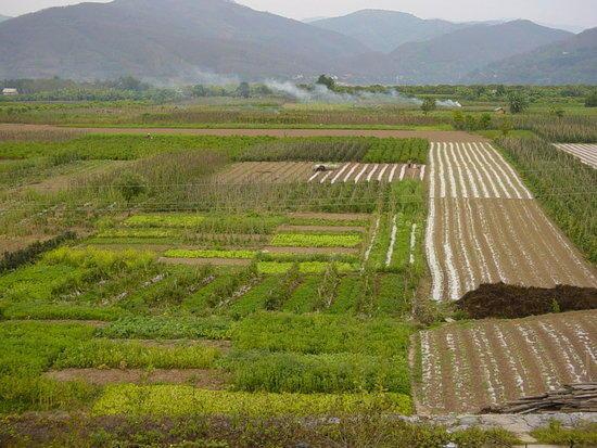 Jinhong Hill N Village Ride (12)