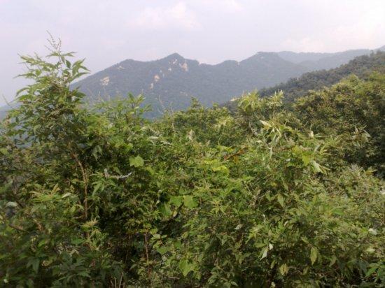 7-Climbing  Down Jigongshan