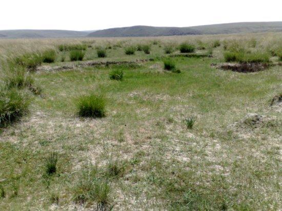 36-Hohhot Grasslands Adventure