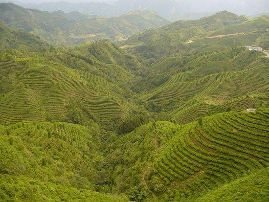 Lingyun Adventure - National Week (39)