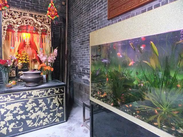 Macau Adventure With CristinaW & Kungfu Ken