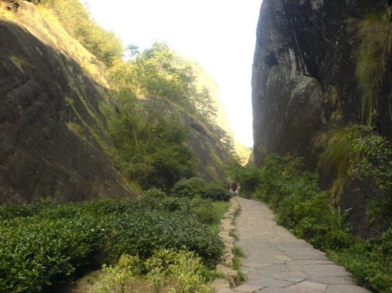 Wuyi Shan Day One 3