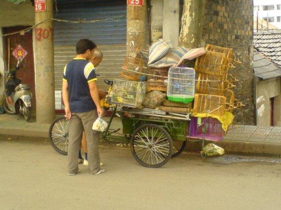 Zhenjiang - City Walk & Dinner 22