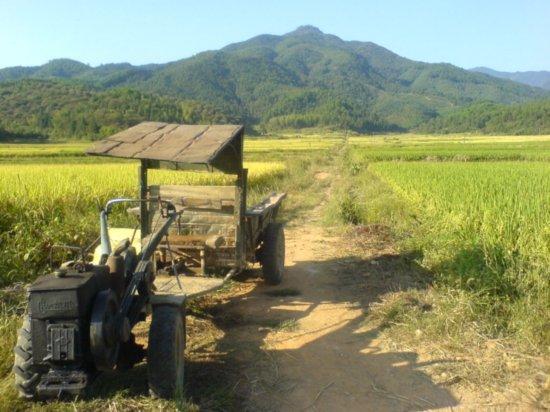 The Great Autumn Rice Harvest Ride 3