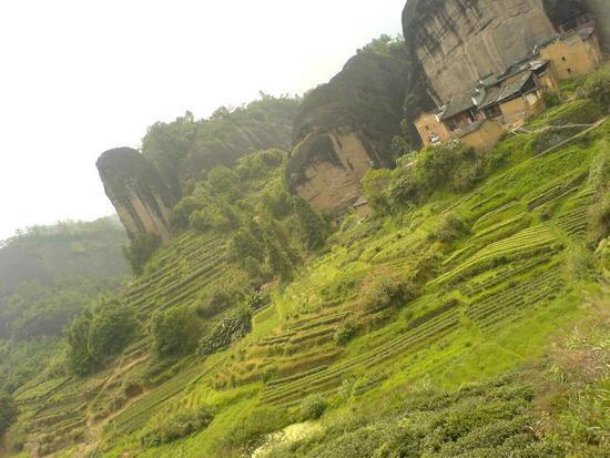 Wuyi Shan Day 2 (40)