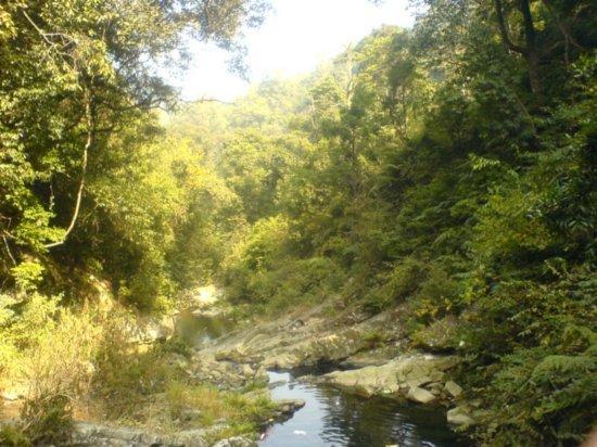 Waterfall Picnic 15