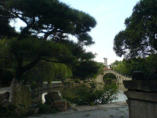 Wenzhou City Walk 14