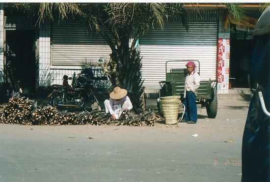 Ganlanba Mekong River Area (5)